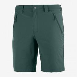 Salomon Wayfarer LT Short M green gables C13001 pánské lehké softshellové kraťasy1